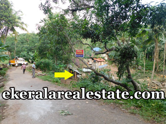 20 cents cheap rate plot sale in Thazhe Elampa  Attingal
