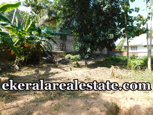 Residential Land plot 10 cents Sale at Sreekariyam