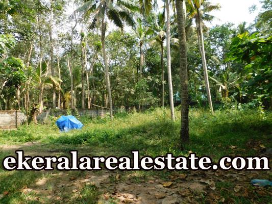 Mohanapuram 12 cents residential plot sale in Trivandrum
