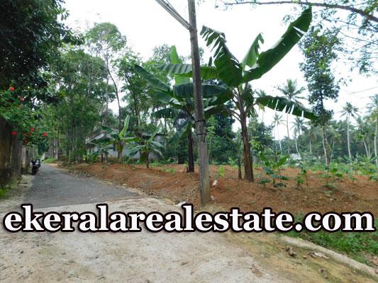 20 Cents House Plot Sale at Kizhamachal Kattakada