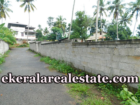 Road Frontage House Plots Sale near Njandoorkonam