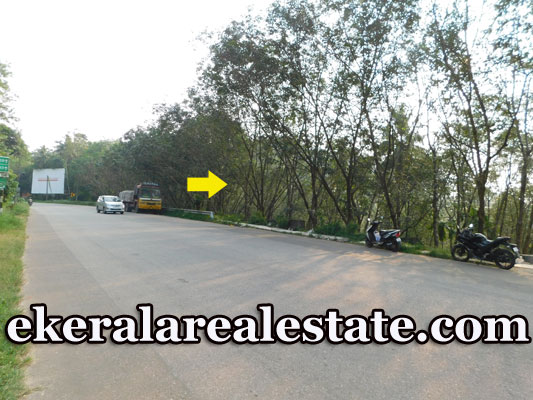 42 cents Residential Land Sale at Vamanapuram