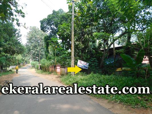 19 cents Residential Plot Sale at Vavarambalam Pothencode
