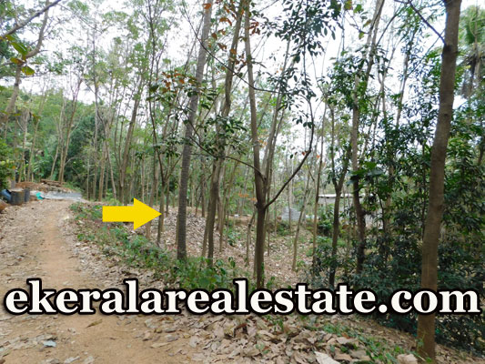 Low Price Rubber Land Sale at Kilimanoor