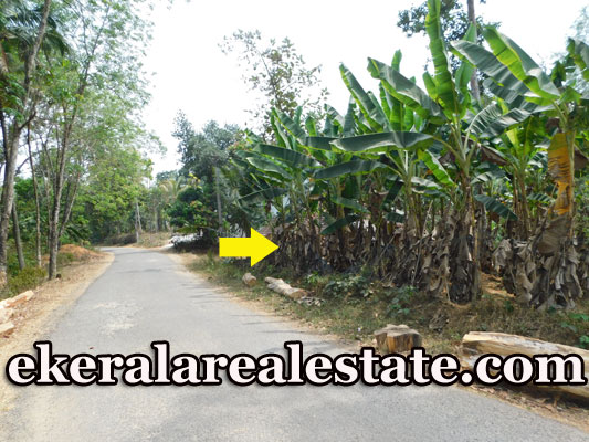 37 cents cheap rate land plot sale in Nellanad Venjaramoodu