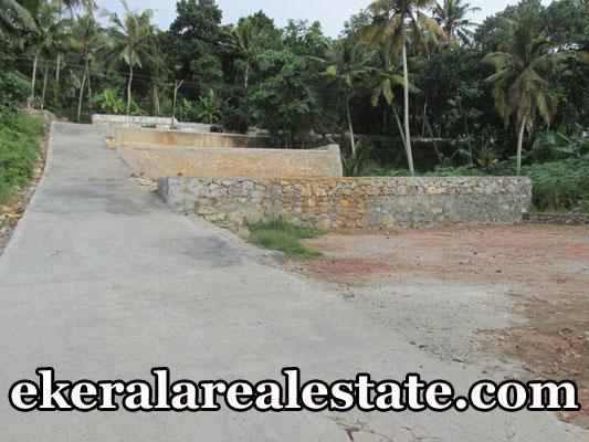 Mangalapuram Thonnakkal 25 cents loan plot for sale