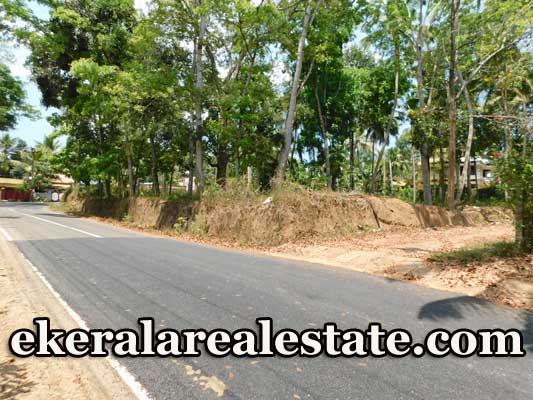 Karanchira-Kattakada-40-cents-Investment-land-for-sale