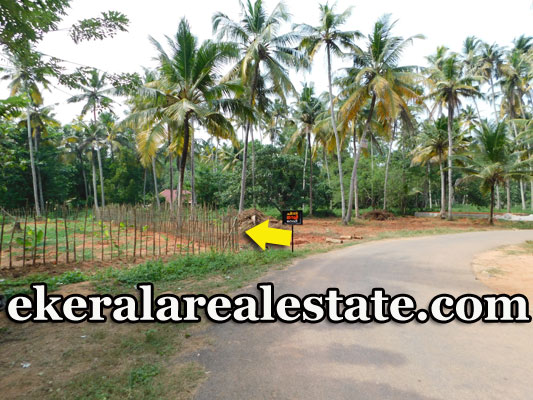 Vennicode Varkala 80 cents plot for sale price below 3 lakhs per cent