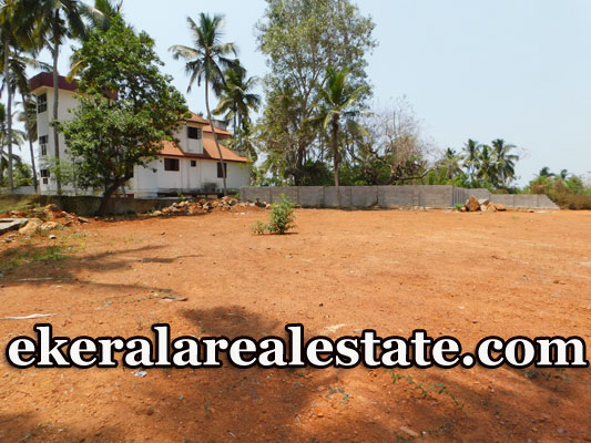 House Plots 38 cents for Sale at beach road Kovalam