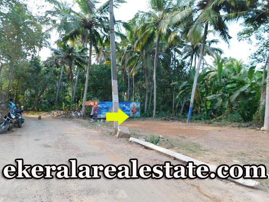 Mangattukadavu 14 cents Lorry Access land plot for sale