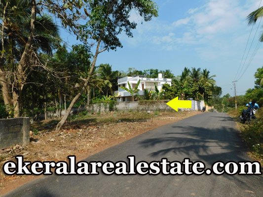 Low-Price-House-Plots-Sale-at-Mangalapuram-near-Technocity