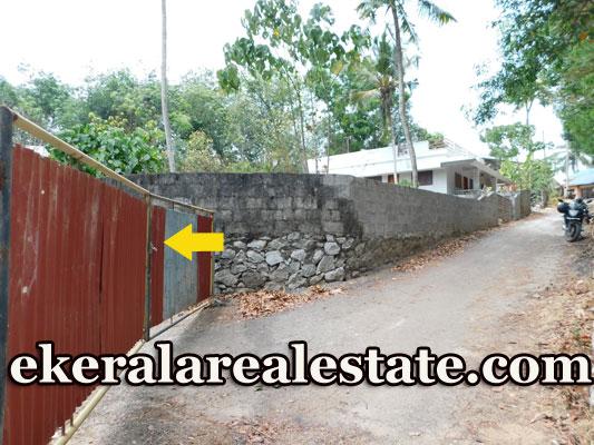 24 cents residential plot for sale in Mulamukku near Nedumangad