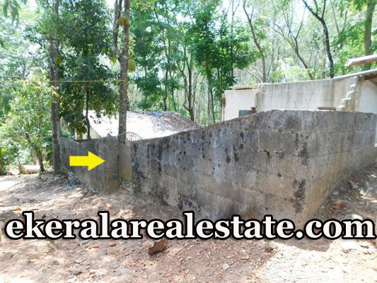 Puliyarakonam 4 Cents Residential Plot for Sale