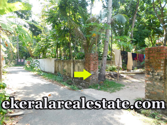 12.5  cents land and used house for sale in Chavara Kollam