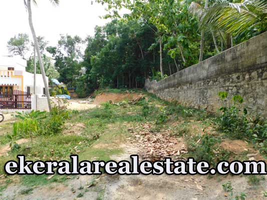 House Plot for sale in Pavathiyanvila Parassala