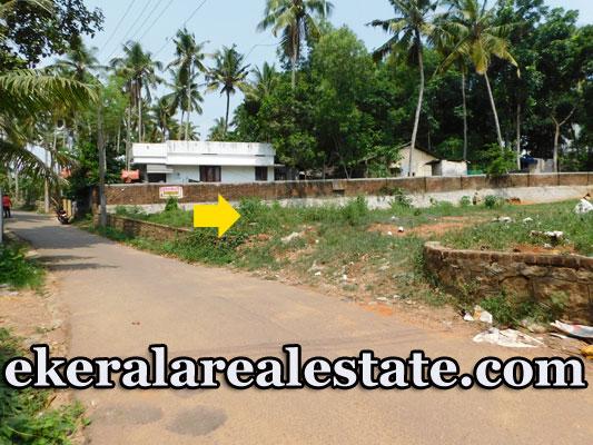 Karakonam Lorry access residential house plot for sale