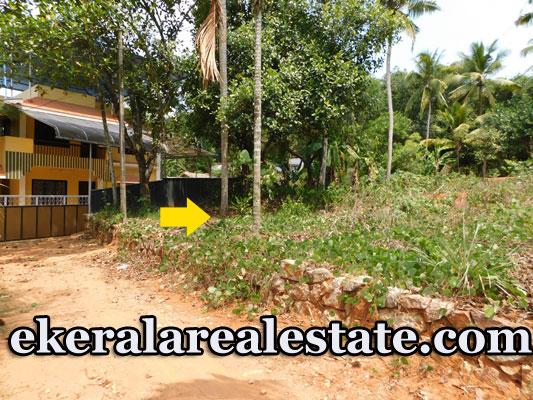Price below 2 lakhs per cent land sale in Palachira near Varkala