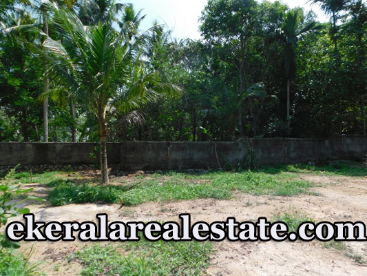 Residential land for sale near Bypass Chanthavila