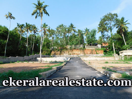 Immediate-sale-lorry-access-land-in-Attingal