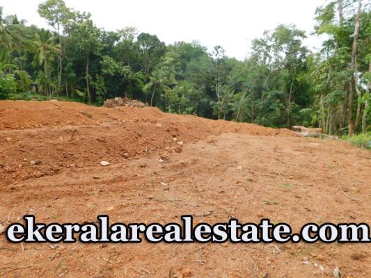 Mullassery-Karakulam-42-cent-Residential-Plot-For-Sale