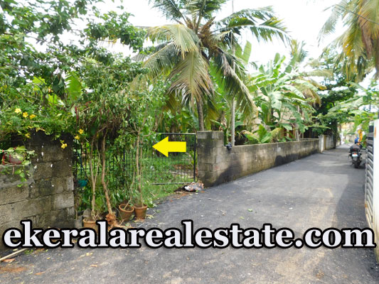9-Cents-Residential-Plot-For-Sale-near-Peroorkada