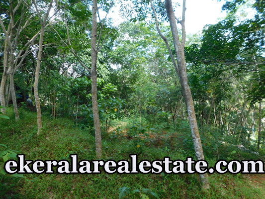 Ayiroopara 19 cents residential house plot for sale