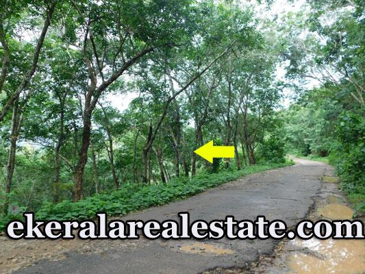 Rubber Plot For Sale at Koliyakode Pothencode 95 Lakhs per Acre