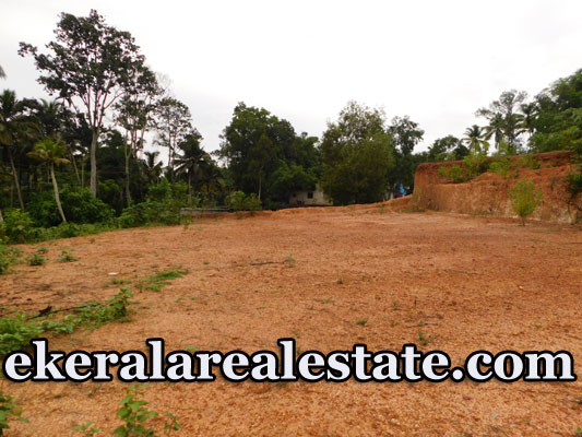 Lorry Access land sale Near Thonnakkal Bio Science Park
