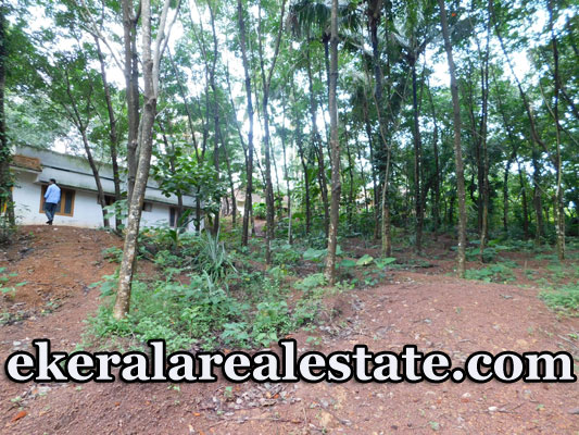 Residential Plots 19 Cents  Lorry Access land for Sale in Vattappara