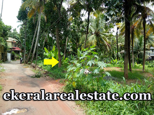 Mannanthala 22 cents house plot for sale price below 5 lakhs per cent