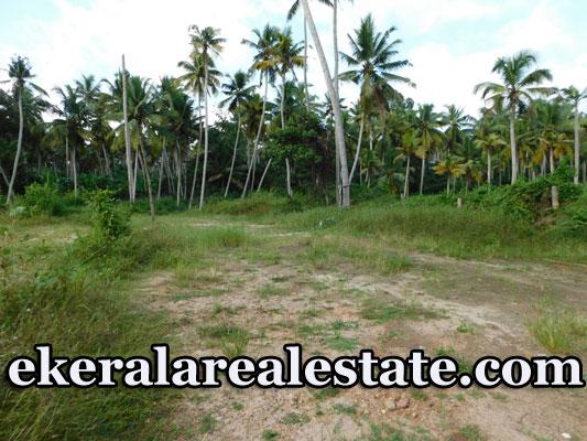 Pullanivila Karyavattom 3.15 Acre Land Plot For Sale