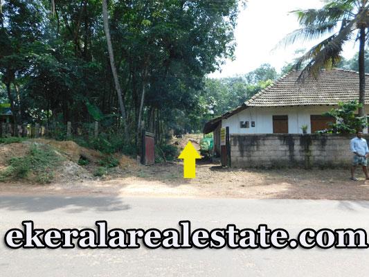 Road Frontage 7.5 cents Residential Land For Sale at Tholady Karakonam