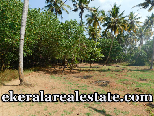 House Plot for Sale at Varkala trivandrum