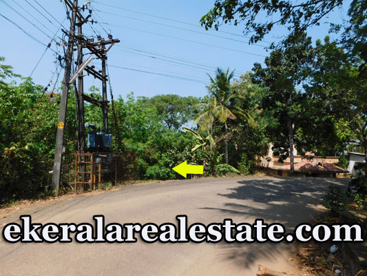 1.25 Lakhs 49 Cents House Plot for Sale at Kundara Kollam
