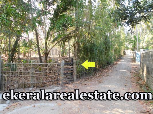 37 Cents House Plots For Sale at Mangalapuram