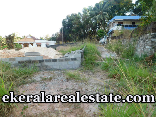Pulayanarkotta 6 Lakhs per cent Residential Land For Sale